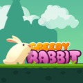 Rabbit Race