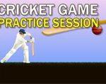 Cricket Spel