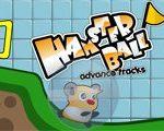 Reuzen Hamster Sprong