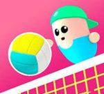 Volley Bonen