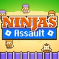 Ninjas Aanval
