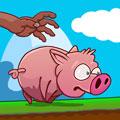 Voer Pig Run